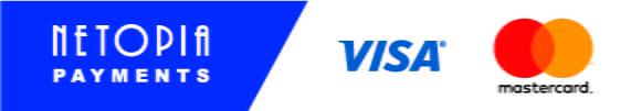 netopia banner blue
